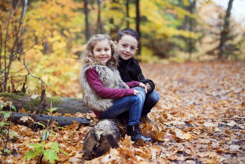 Die Kinder, die im schönen Herbst spielen, parken am kalten sonnigen Falltag lizenzfreie stockfotografie