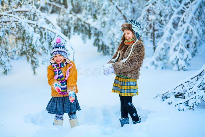 Die Kinder im Winterholz lizenzfreie stockbilder