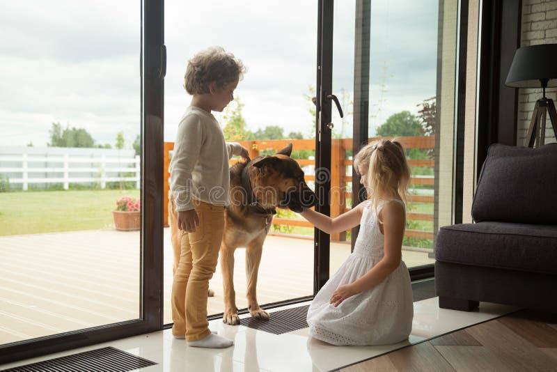 Die Kinder, die mit großem Schäferhund spielen, verfolgen das Kommen innerhalb des Hauses stockfotos
