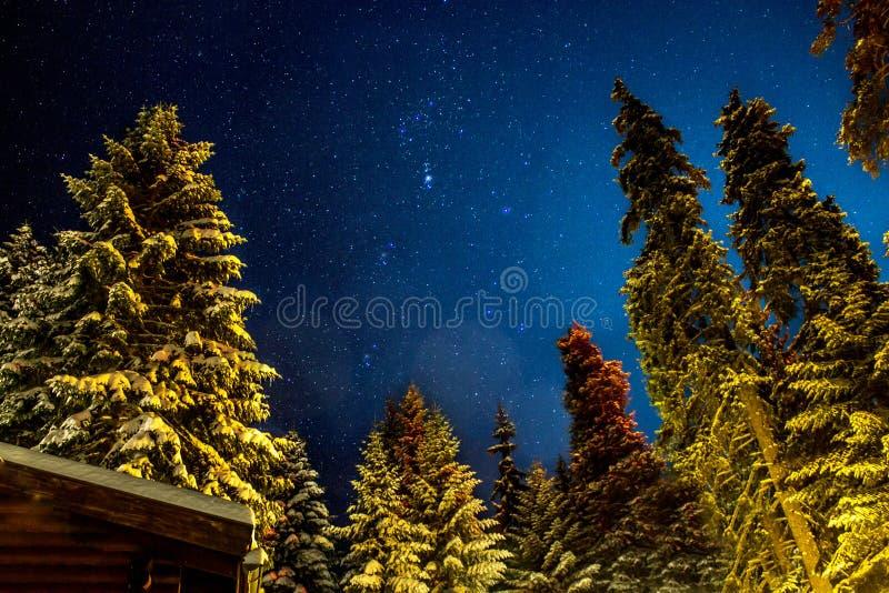 Die Konstellation Orion stockfoto