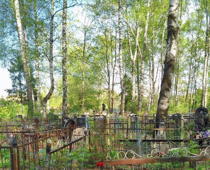 Die Krähe sitzt auf dem Grab stockbild