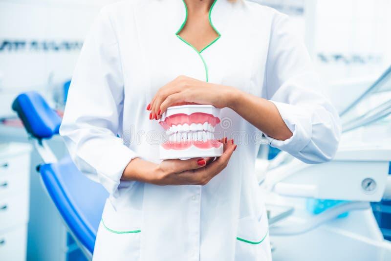Die Krankenschwester, die Zähne hält, modellieren lizenzfreie stockfotos