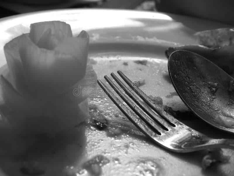 Die kulinarische Erfahrung lizenzfreie stockfotos