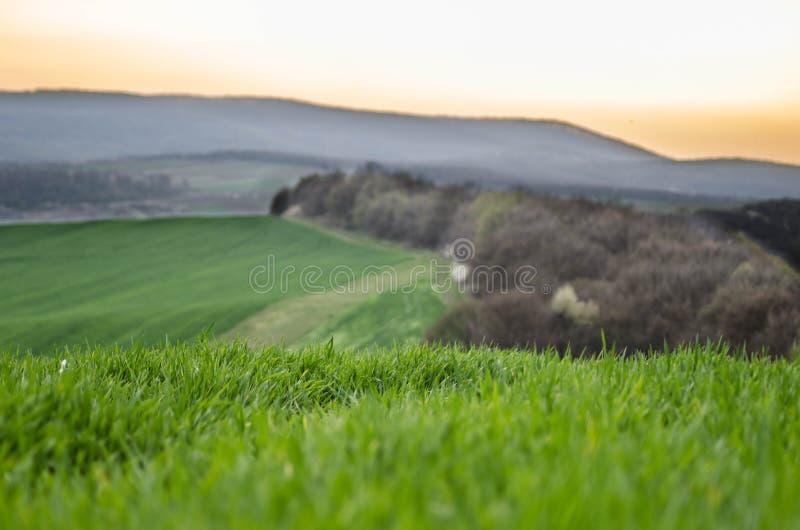 Die Landschaft des Hügels stockfotos