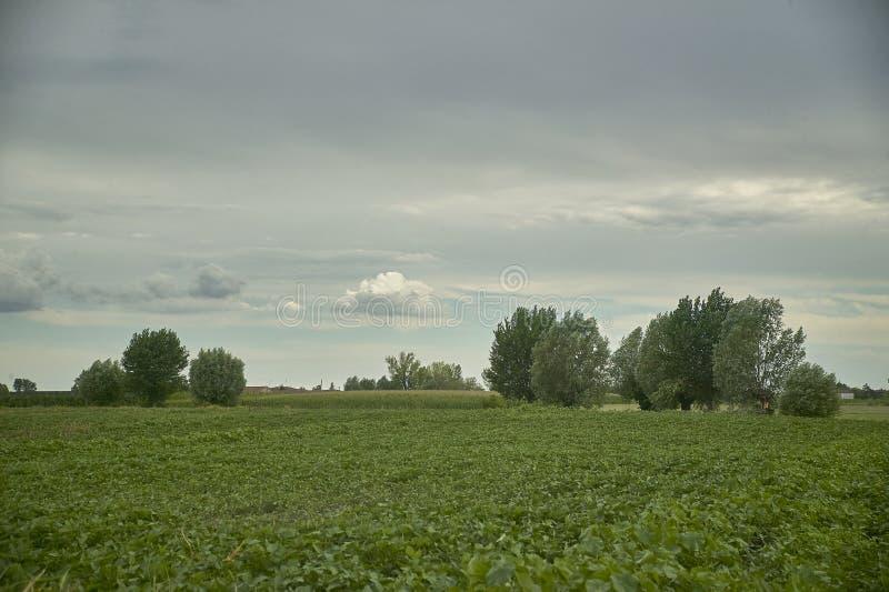 Download Die Landschaft Und Das Gewitter Stockbild - Bild von gras, landwirtschaftlich: 96930633