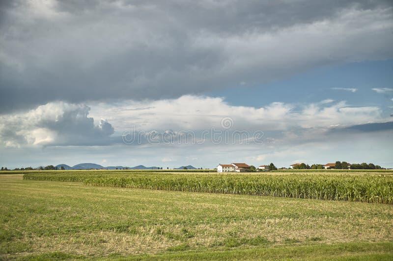 Download Die Landschaft Und Das Gewitter Stockbild - Bild von wolken, gras: 96930949