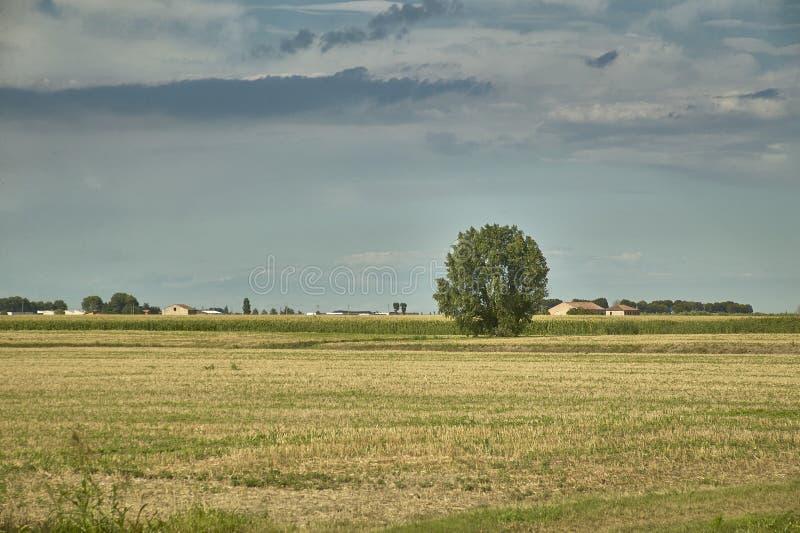 Download Die Landschaft Und Das Gewitter Stockfoto - Bild von field, rein: 96931128