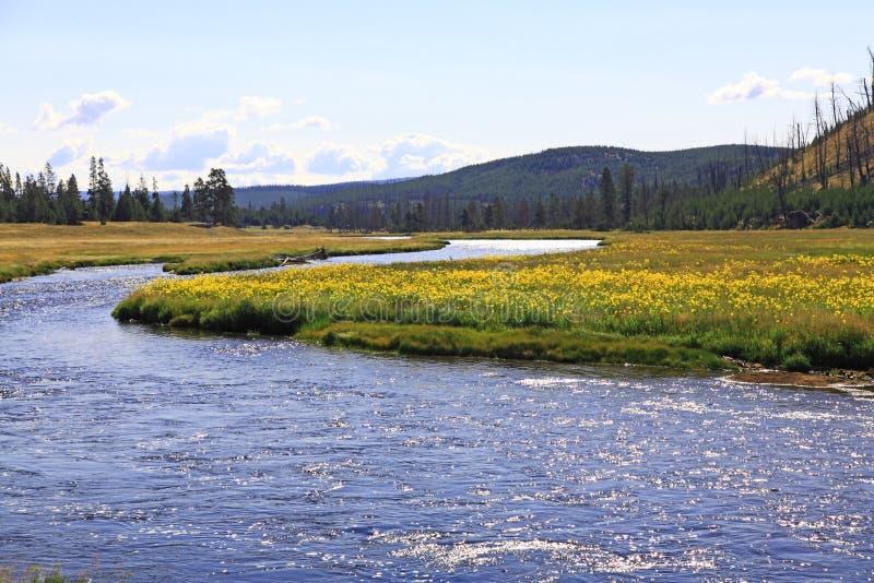 Die Landschaft von Nationalpark stockbild