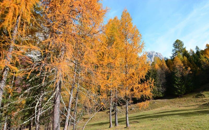 Die Landschaften der Berge in den Herbstmonaten lizenzfreie stockfotografie