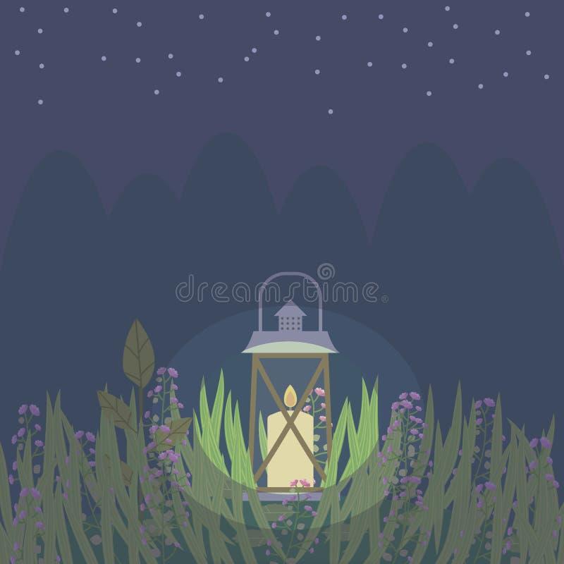 Die Laterne, die mit einer Kerze auf einer Reinigung im dunkelblauen Himmel des Grases Nachtwaldmit Sternen brennt, vector Illust stock abbildung