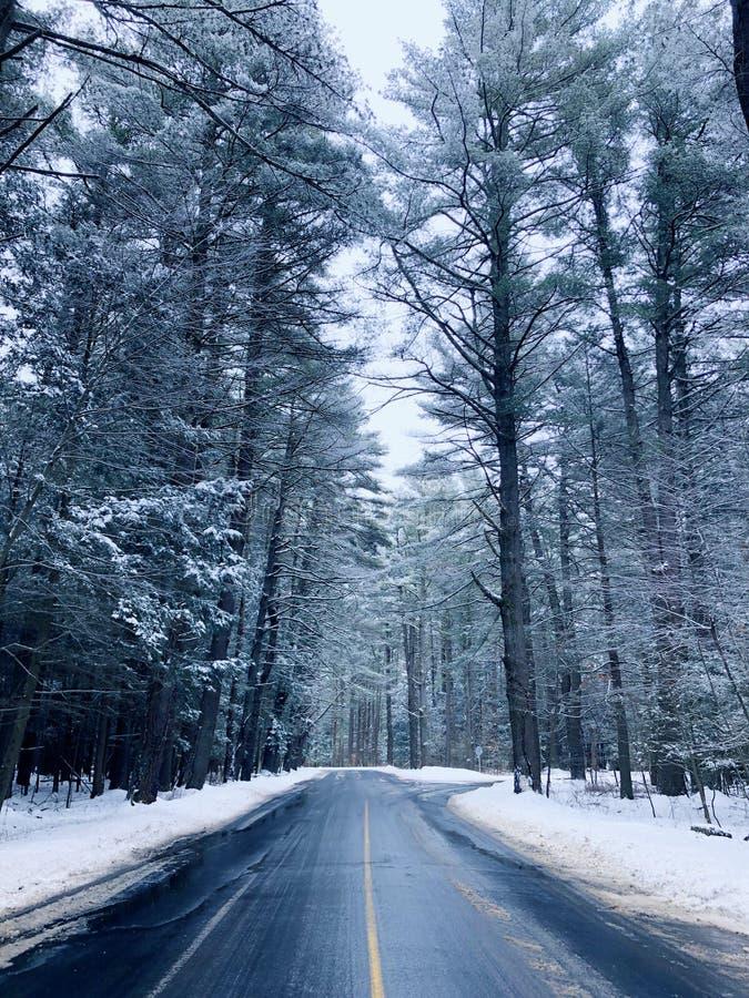 Die leere Straße mit Bäumen bedeckte Schnee stockfoto