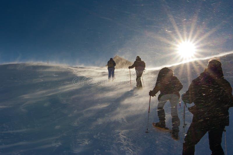 Die Leute, die auf dem Schnee in einem Wind wandern, stürmen stockfotos
