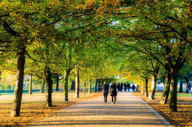 Die Leute, die unter einen treelined Weg in Greenwich gehen, parken lizenzfreies stockfoto
