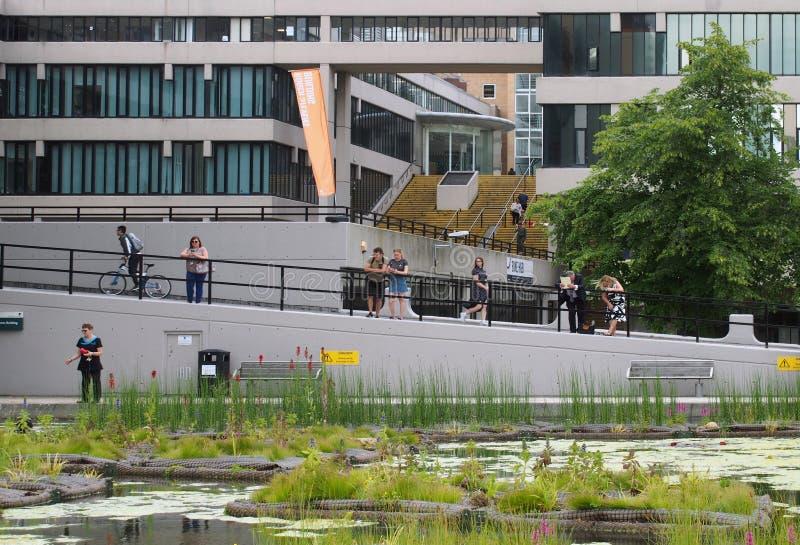 Die Leute standen um den Teich eine Frau aufpassend, die Enten nahe dem Gebäude Roger Stevens an der Universität von Leeds einzuz lizenzfreies stockbild