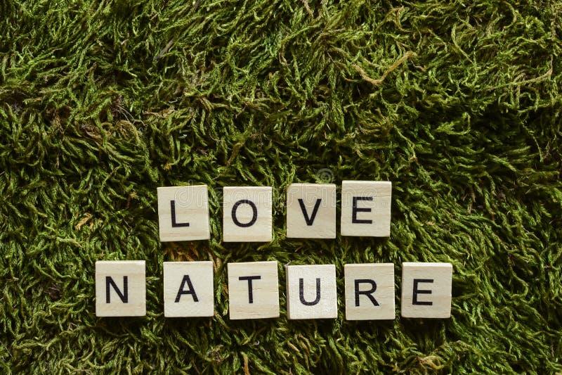 Die Liebesnatur, die mit hölzernen Buchstaben geschrieben wurde, berechnete Form auf dem grünen Gras stockbild
