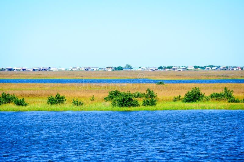 Die Louisiana-Sumpfgebiete lizenzfreie stockfotos