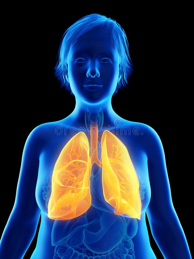 die Lunge einer beleibten Frau stock abbildung