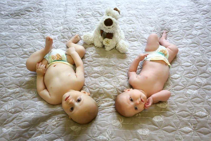 Die Mädchen sind drei Monate alte und der Junge ist sechs Monate ausgezogen, in den Windeln lustige Kinder auf einem grauen Hinte lizenzfreie stockfotografie