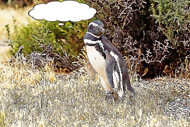 Die Magellanic-Pinguin Spheniscus magellanicus Karikatur stockfotografie