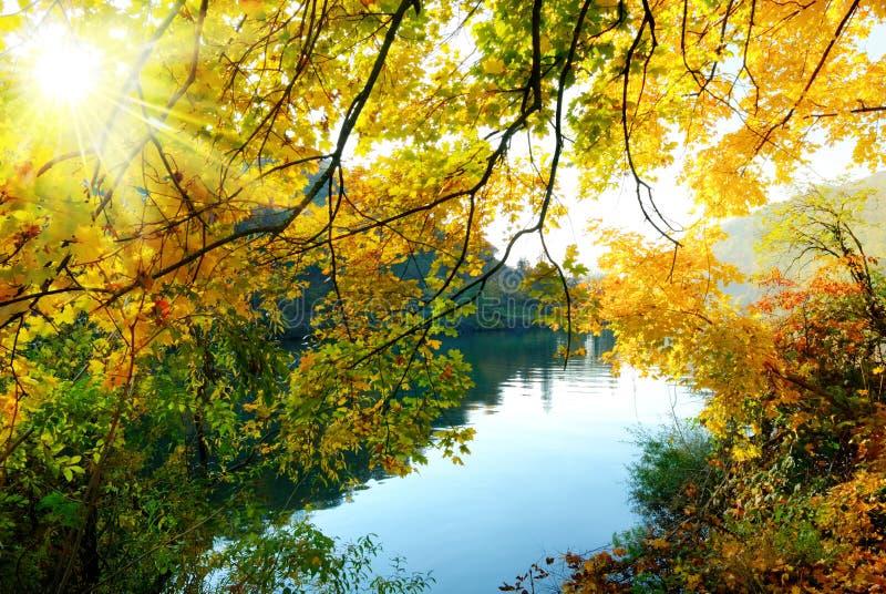 Die magischen Farben des Herbstes stockfotos