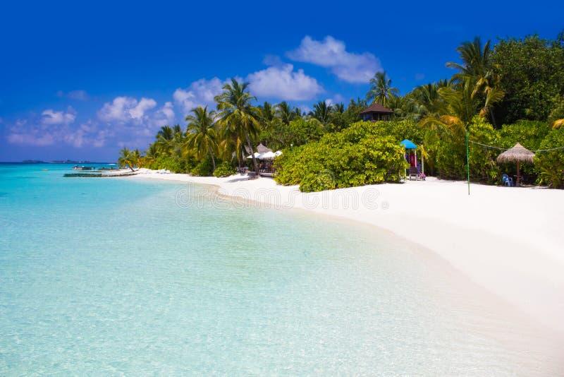 Die Malediven, Eden auf Erde stockbilder