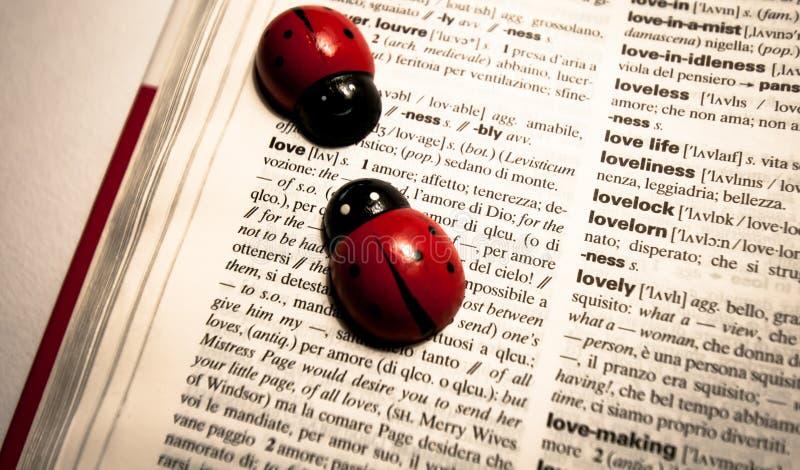 Die Marienkäfer auf einem Wörterbuch das Wort übersetzend lieben von englischem zum Italiener stockbild
