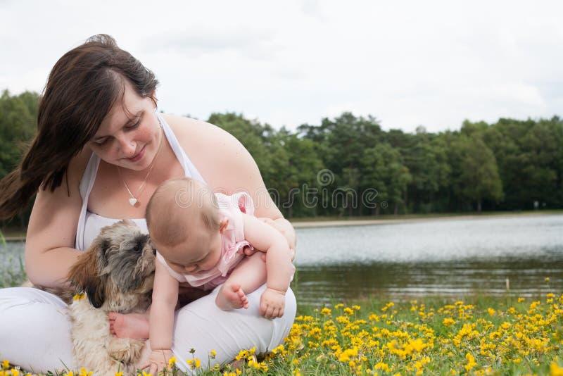 Die mehr Blumen Baby wants stockbilder