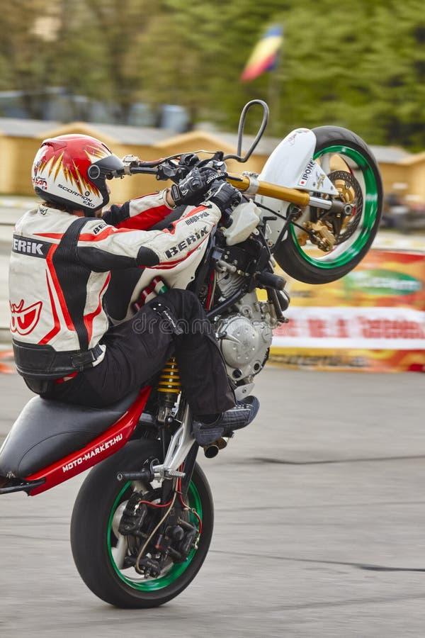 Die Motorradreiterausführung setzen sich Wheelie hin lizenzfreie stockbilder