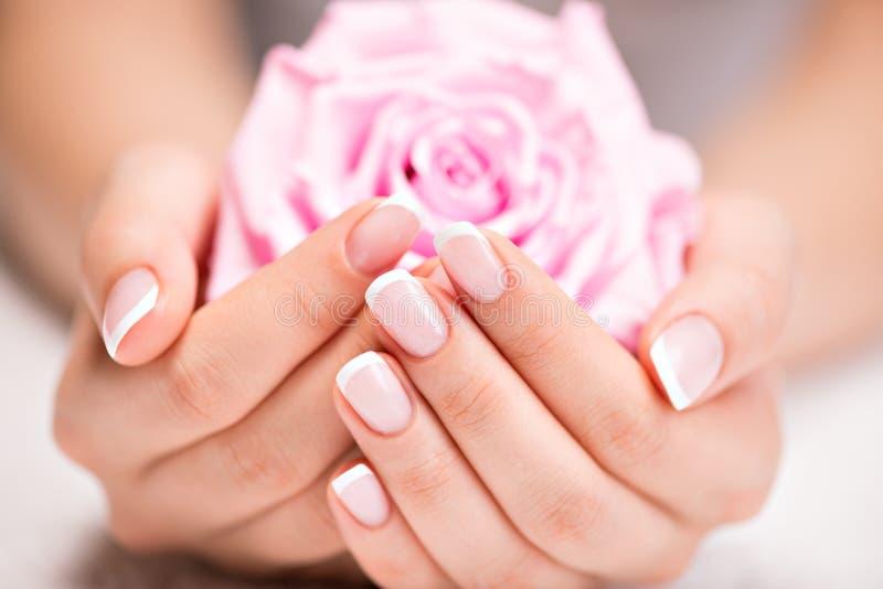 Die Nägel der Schönheit mit französischer Maniküre und stiegen lizenzfreie stockfotos