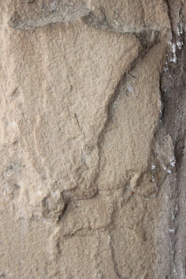 Die Nahaufnahme einer Kalksteinfliese lizenzfreie stockbilder