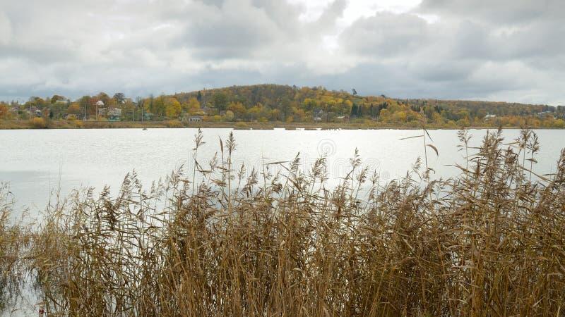 Die Oberfläche von einem großen See lizenzfreie stockbilder