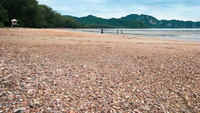 die Oberteile setzen Krabi Thailand auf den Strand stockbilder