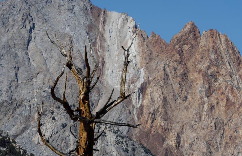 Die Paiute-Felsspitzen von der blauen See-Spur, Sierra Nevada Range, Kalifornien 2 lizenzfreies stockfoto
