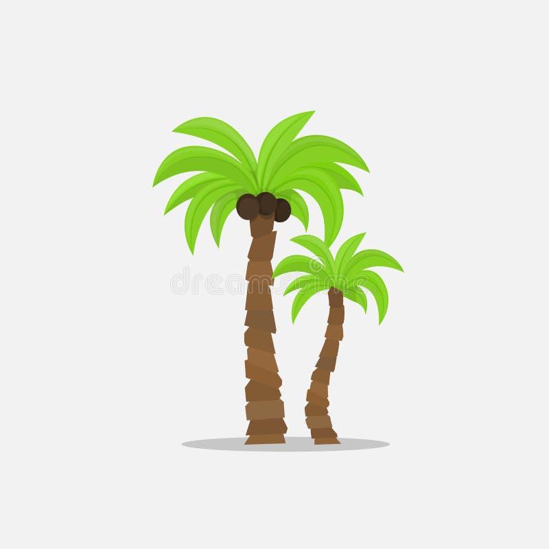 Die Palmen in der Karikaturart lokalisiert auf weißem Hintergrund Vector Illustration Tropische Sommerbaumanlage auf Natur für vektor abbildung