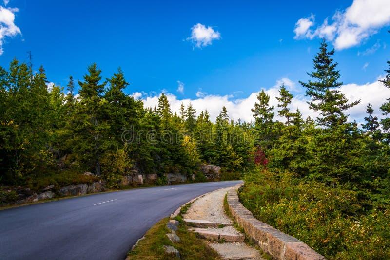 Die Park-Umgehungsstraße im Acadia-Nationalpark, Maine lizenzfreies stockfoto