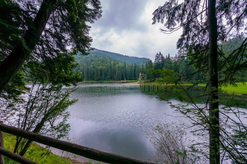 Die Perle der ukrainischen Karpaten ist ein malerischer See Synevir im Wald stockfoto
