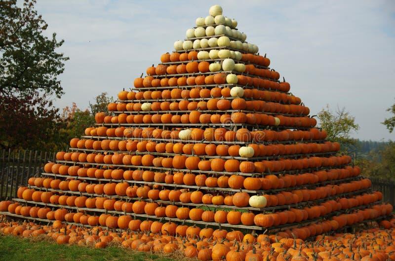Die Pyramide des Kürbises stockfotografie