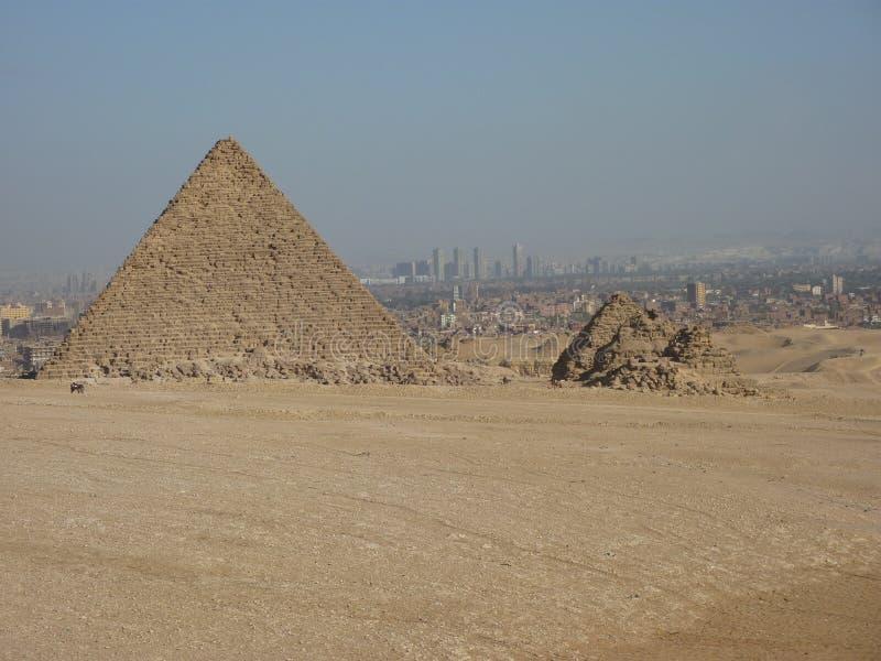 Die Pyramiden von Giseh außerhalb Kairos Ägypten stockbild