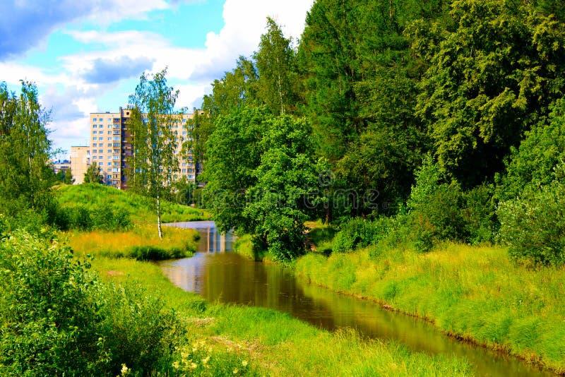 Die Quelle des Stadtteichs im Park im Sommer lizenzfreie stockfotos