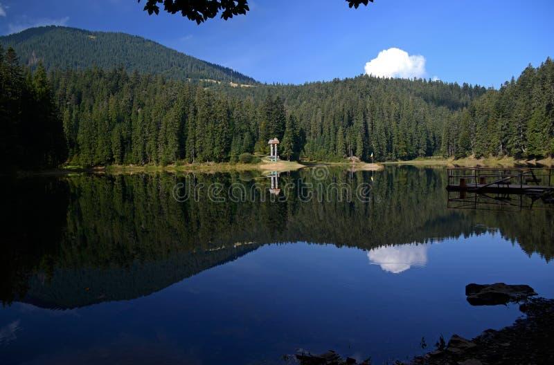 Die Reflexion des blauen Himmels, der Berge und des Kiefernwaldes im alpinen See Synevyr in ukrainischen Karpaten stockfotos