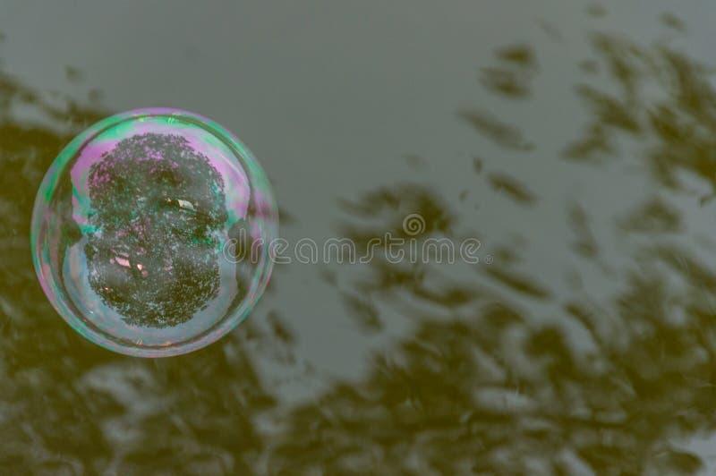 Die Regenbogenblasen vom Blasengebläse stockbilder