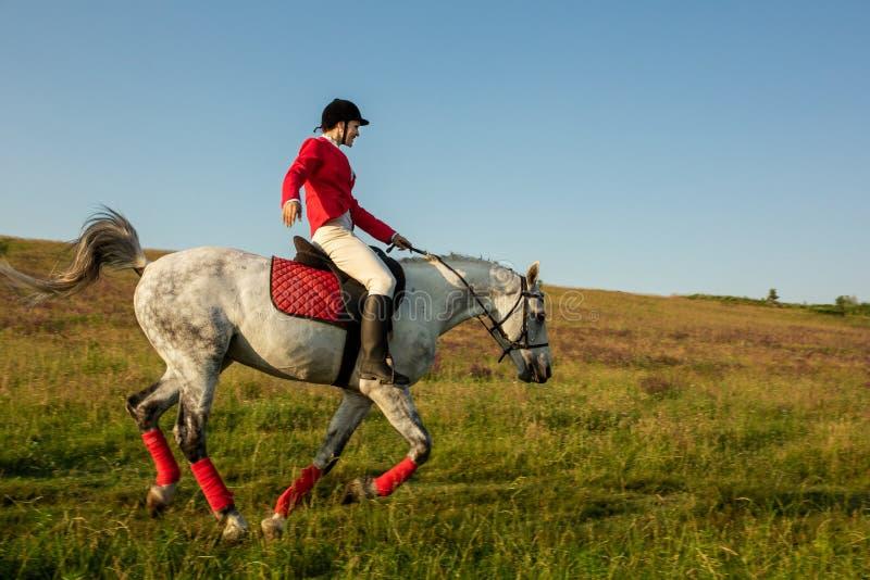 Die Reiterin auf einem roten Pferd Reiter auf einem Pferd Pferd Racing Mitfahrer auf einem Pferd stockbild