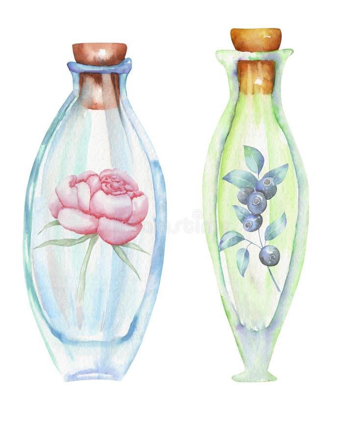 Die romantische Illustration und die Märchenaquarellflaschen mit Waldblaubeeren verzweigt sich und Pfingstrosenblumen nach innen lizenzfreie abbildung
