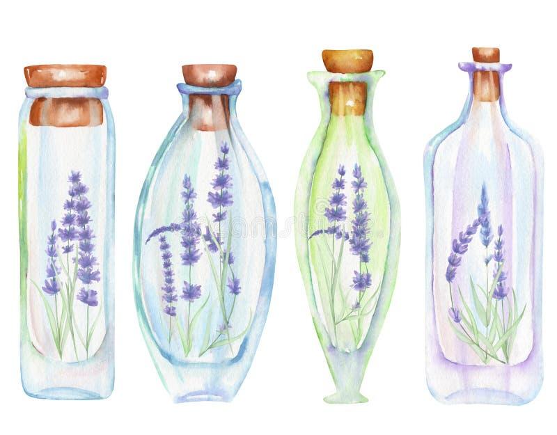 Die romantische Illustration und die Märchenaquarellflaschen mit zartem Lavendel blüht nach innen vektor abbildung