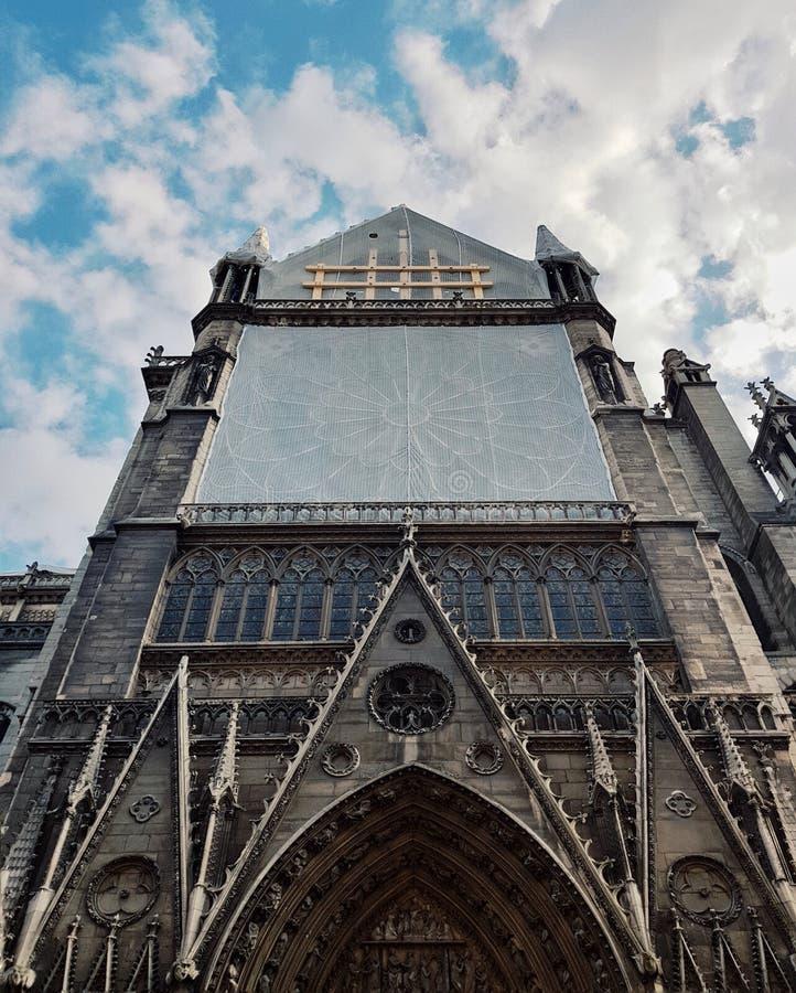 Die rosafarbenen Fenster des Notre-Dame de Paris in der Wiederherstellung nach Feuersbrunst stockbild