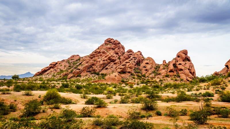 Die roter Sandstein Buttes von Papago parken nahe Phoenix Arizona stockbilder