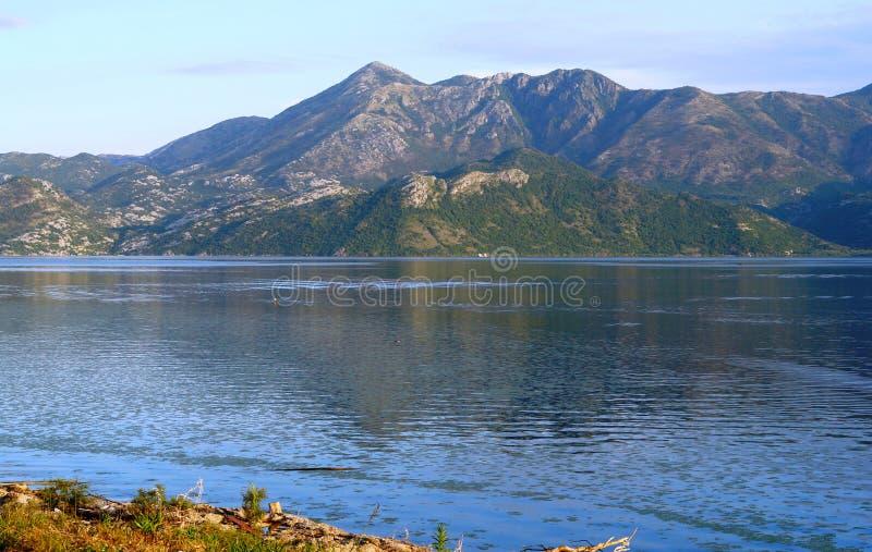 Die ruhige Ausdehnung von Skadar See, von Balkan-Bergen und von blauen Himmel stockfotos