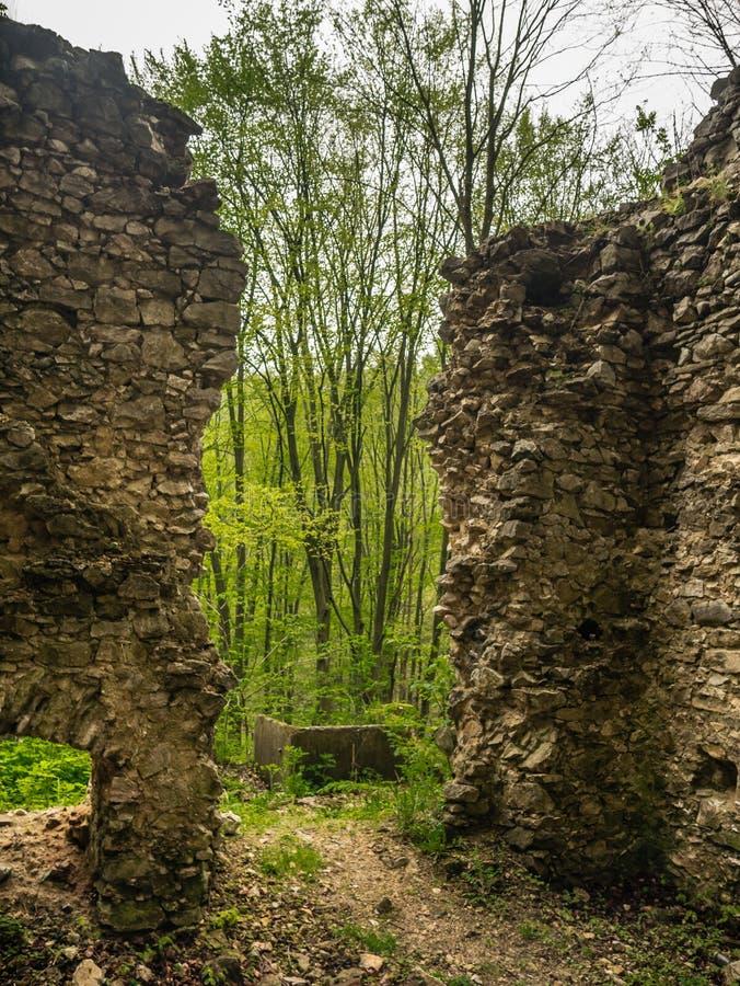 Die Ruinen eines Gebäudes im Wald stockbild