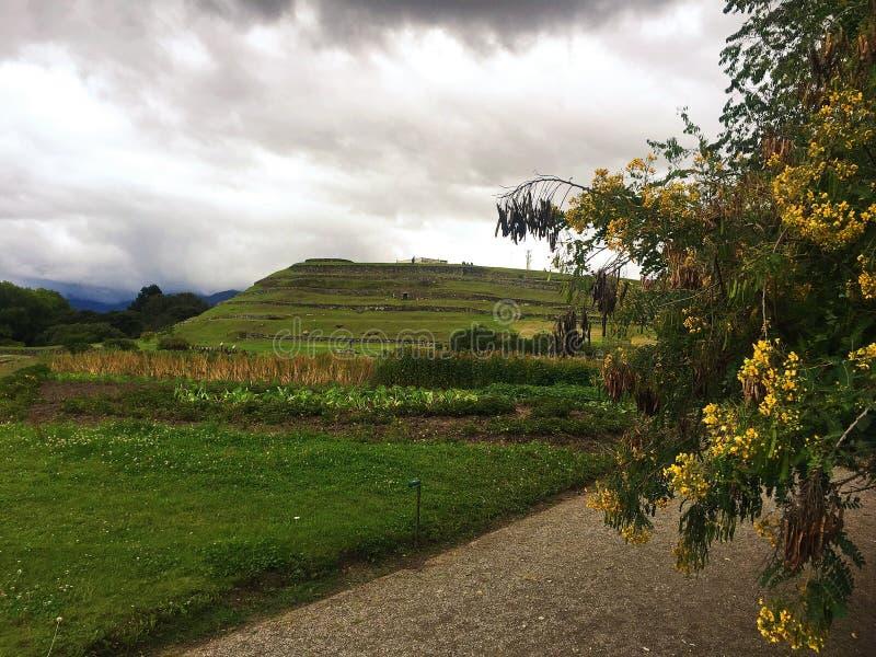 Die Ruinen von Pumapungo in Cuenca Ecuador lizenzfreie stockfotografie