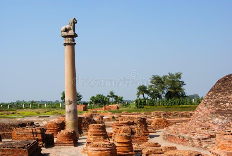 Die Säulen fanden bei Vaishali mit einzelnem Löwekapital stockfotos